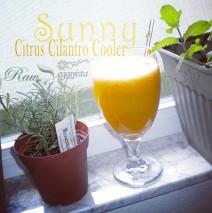 Sunny Citrus & Cilantro Cooler