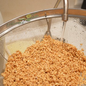 Cleaning whole raw oat groats w/filtered water before preparation